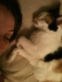 Soneca com Leona, tempos bons que já já vão voltar!