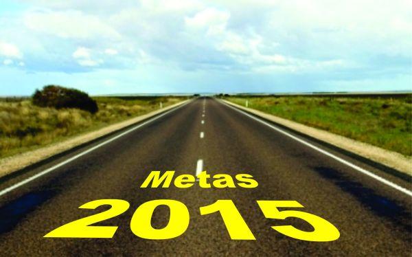 Metas_2015